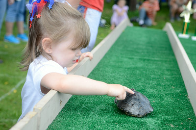 Tiffany Williard, 3, Harrisburg, tries to get her turlte to go during Friday's annual Turtle Derby in New Berlin.