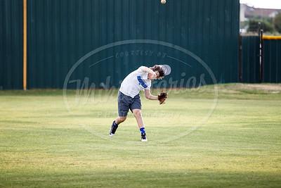 Unicorn Baseball-11125-160609