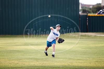 Unicorn Baseball-11134-160609