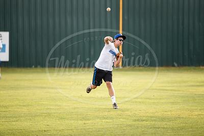 Unicorn Baseball-11114-160609