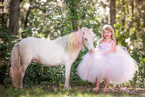 Toler Unicorn Session