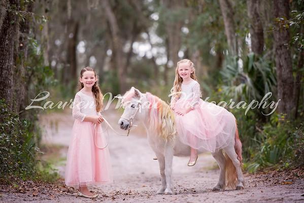 Unicorns Jan 2020 - Norton
