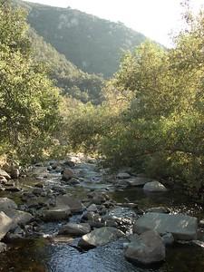 2008-10-17_15-59-20_foss
