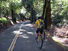 After a quick 1200' climb, we descended Pinehurst/Canyon Rds - gorgeous.