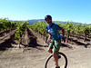 Riding again. We take the offroad option, passing endless fields of grapes.