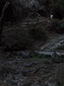 2008-10-11_17-45-37_foss