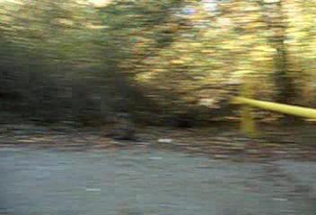 2005-11-13_11-25-44_foss