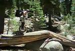 2007-07-03_20-19-50_foss