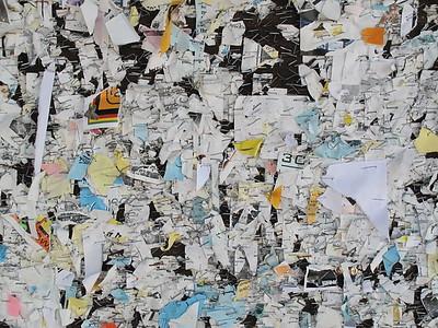 2009-01-04_11-11-45_foss