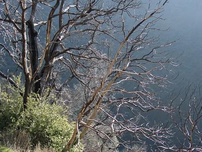 2007-01-28_11-34-17_foss