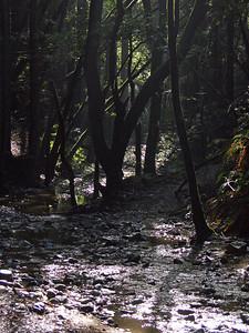 2006-02-04_13-41-02_foss