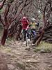 John Foss rides through the rocks between the manzanita