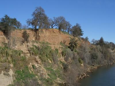 2008-02-13_11-48-51_foss