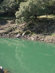 2008-02-10_11-59-17_foss