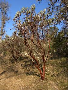 2007-01-20_13-22-14_foss