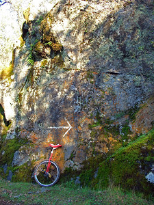 That-a-way! Along a hiking trail above the Quarry Trail (I was carrying the unicycle)