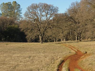 Olmstead Loop Trail, in the town of Cool