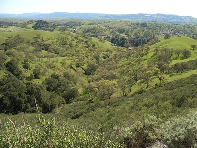 Looking down into a valley of green, toward Danville.