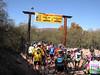 Sabino Creek Crossing