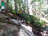 Beau on Lower Skull Trail - very steep.