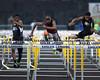 110m Hurdle Luella