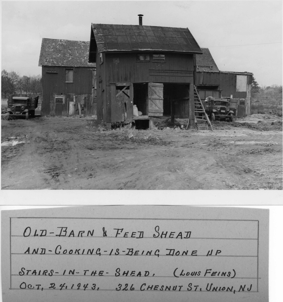 Louis Feins property located on what is now West Chestnut St.