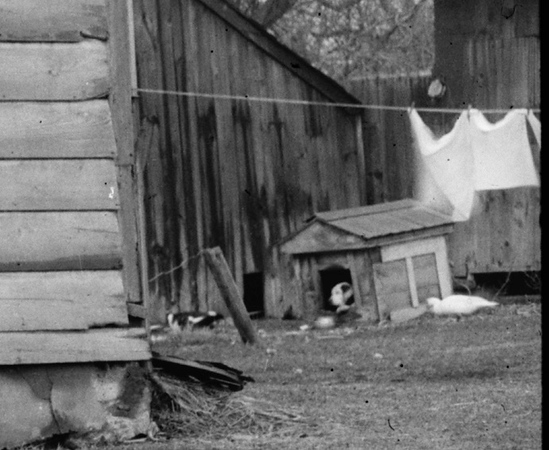The Brandt-Headley Dog House with dog inside in 1936.