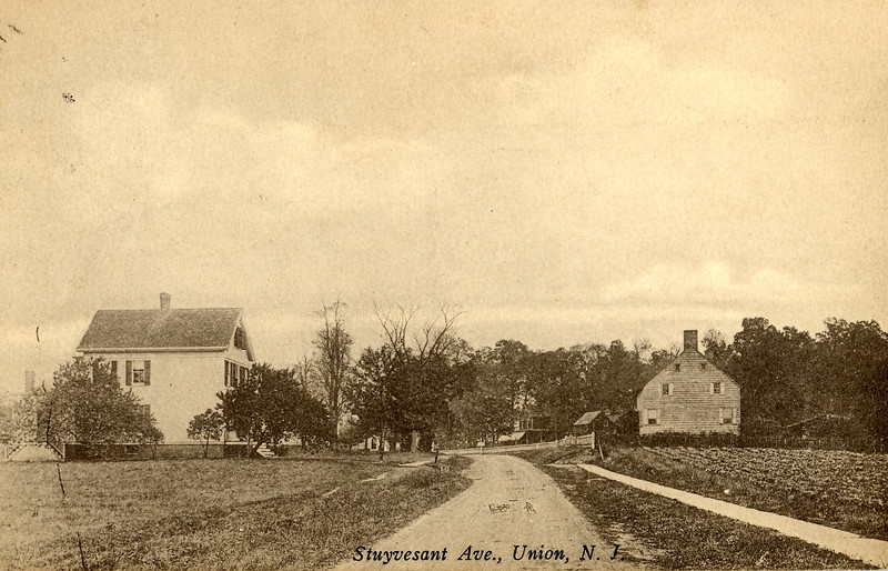 One the left is the home of John B. Bonnel. The house on the right could belong to H. A. Hanson. Barely visible and further down the street on the right is the home of M. E. Searing.