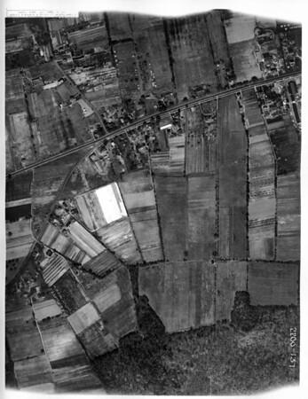 Aerial 137 spruce burnet