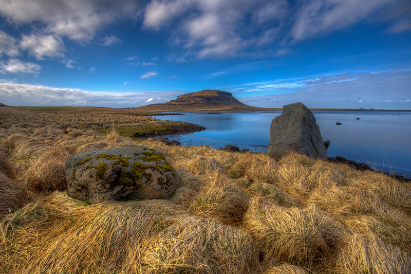 Rocks In Weeds, Snaefelsness Peninsula, Iceland