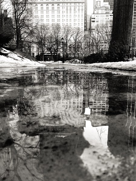 Reflections as the Snow Melts in Central Park - BW