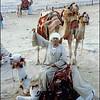 Camel herder in Egypt, 1979