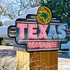 Texas Roadhouse neon sign