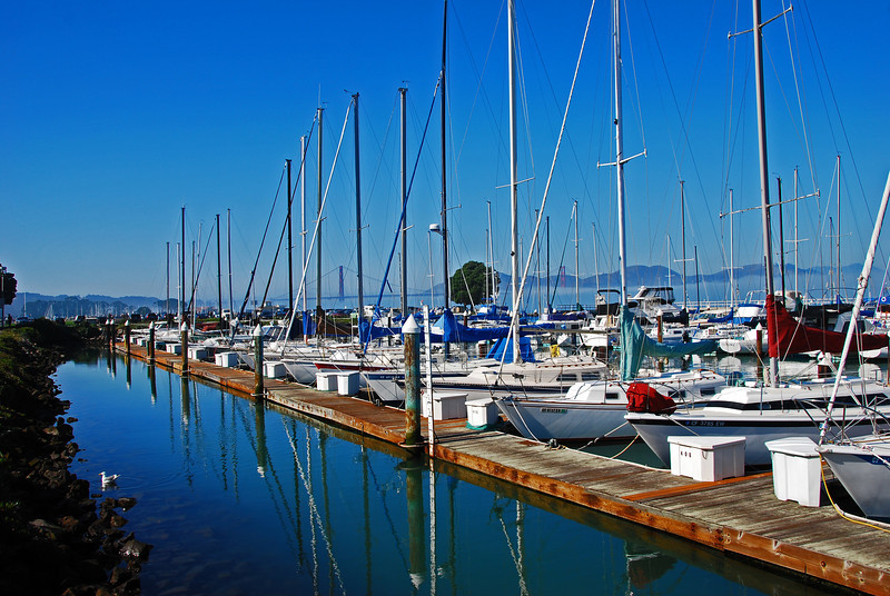 San Francisco Bay Yacht Club Marina, If you look carefully you can see the Golden Gate Bridge in the background along with the mountains of Headlands State Park