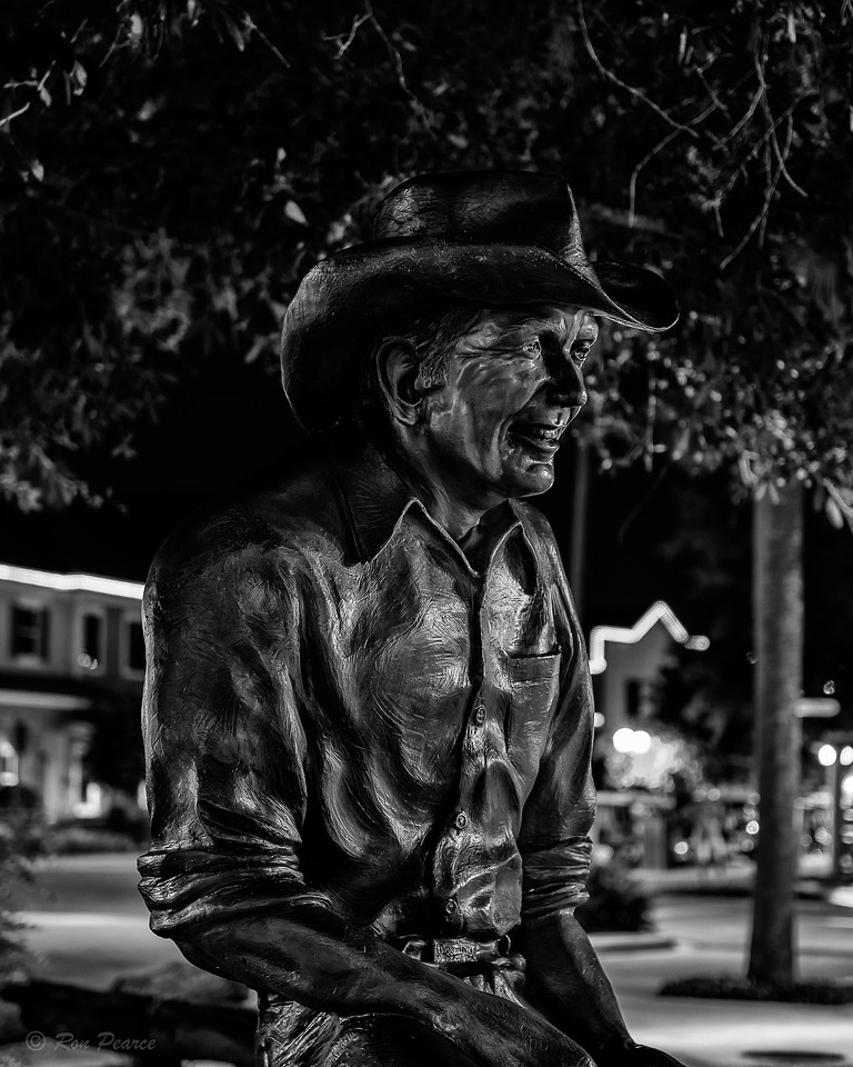 """""""Florida Cracker""""  In honor of all the Florida Cowboys, the title """"cracker"""" came from the early days of ranching and cattle management.  The cowboys used big whips that made a cracking sound to move the cattle along, hence the name Florida Cracker came to be.  Few people realize it but, Florida was the first state to supply cattle and today is the largest cattle producing state, in the United States."""