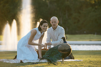 Thure Lindhardt and Camilla Belle in Bald.
