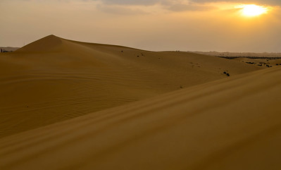 The Desert Safari in The United Arab Emirates.