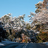 Trees heavy with snow making a cover for the road.