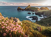 The evening glow! - Kynance Cove, Cornwall