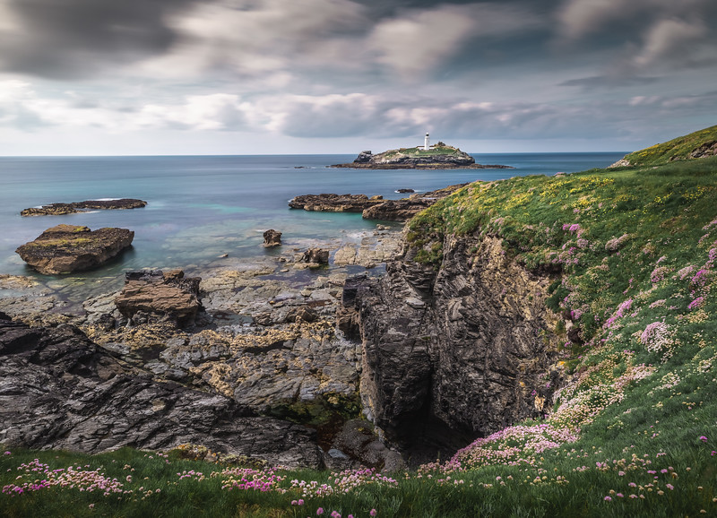 Rocks and Roses - Godrevy, Cornwall
