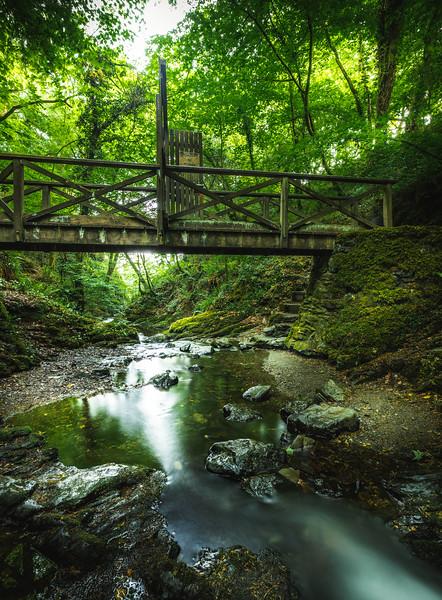 Woodland Wonderland - Lydford Gorge, Dartmoor