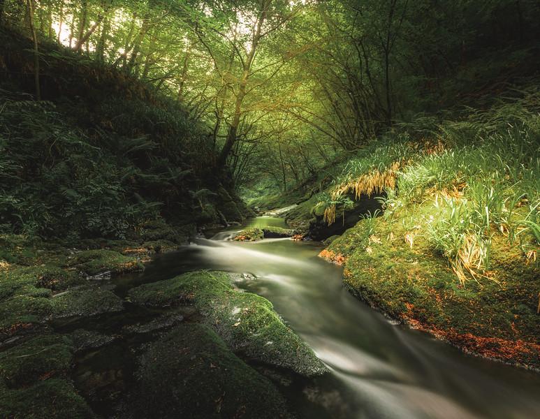 Play of Light - Lydford Gorge, Dartmoor