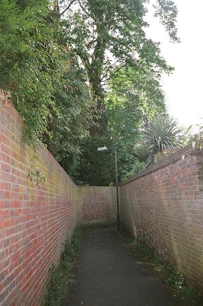 7 cornered alley