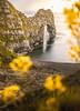 Spring at Jurassic Coast - Durdle Door