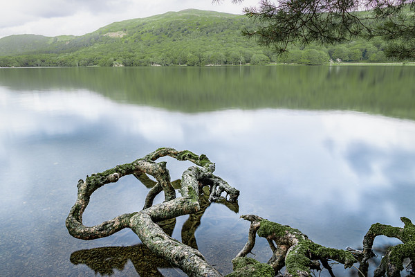 Veins! - Coniston Water , Lake District