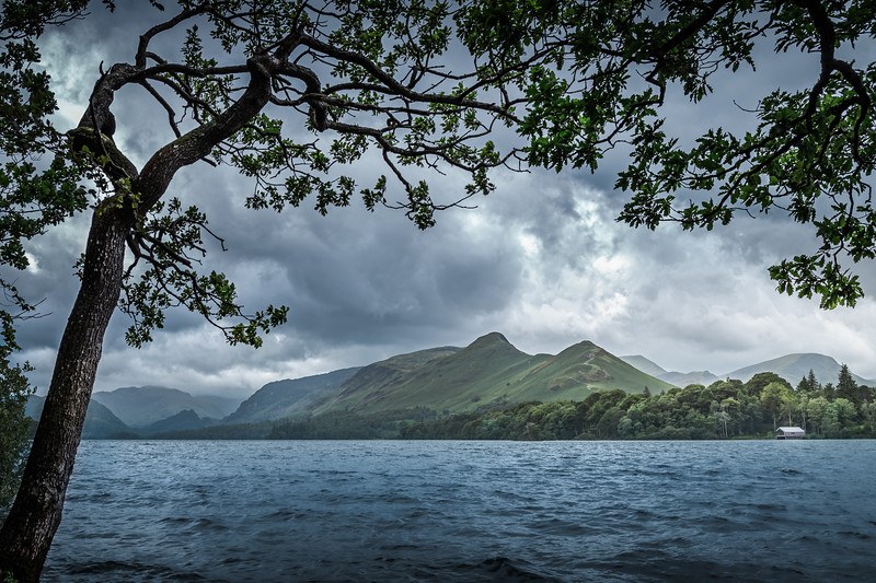 Windswept! - Isthmus Bay, Lake District