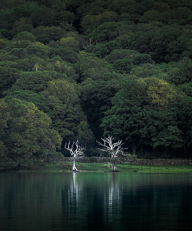 Twins! - Coniston Water , Lake District