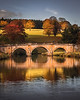 Reflections of Gold! - Chatsworth, Peak District