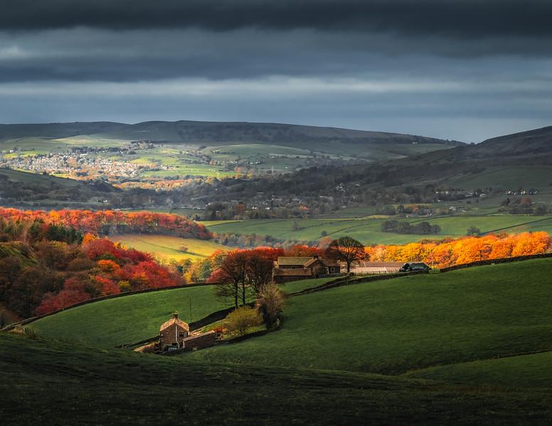 Nature's Spotlight - Peak District