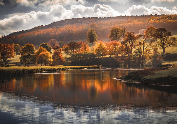 Autumn Glow! - Chatsworth, Peak District